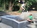 Upland Brewery Skate Dot